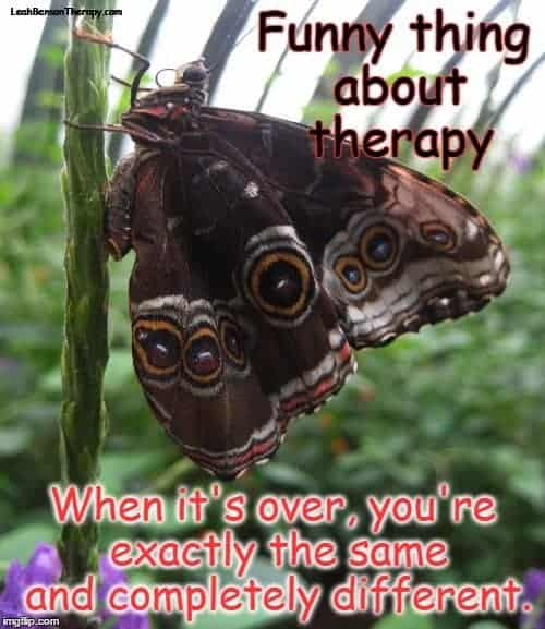 funny thing about therapy butterfly image