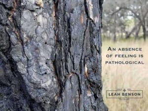 Photo of a burnt tree trunk with the text, An Absence of Feeling is Pathological