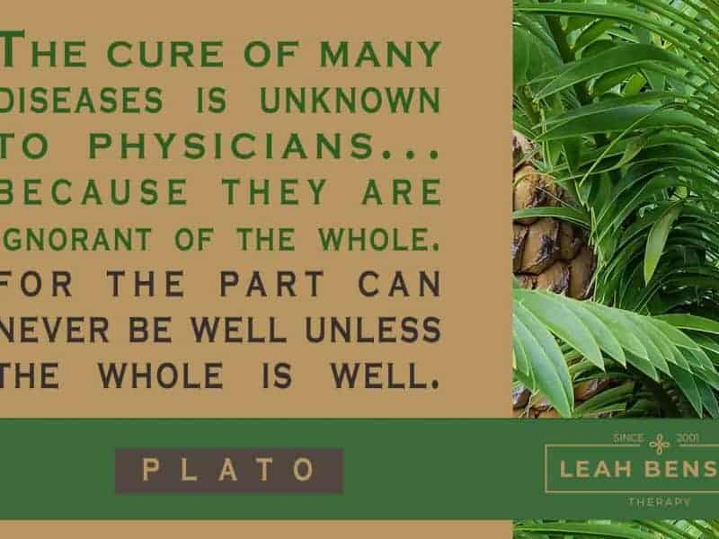 The cure of many diseases is unknown to physicians...because they are ignorant of the whole. For the part can never be well unless the whole is well. -Plato
