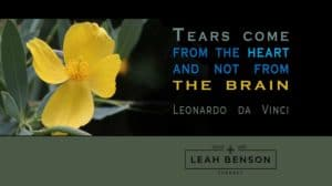 Tears come from the heart and not from the brain. Quote by Leonardo da Vinci - photo of a flower.