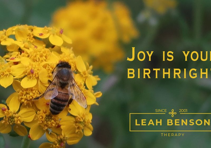 Joy is your Birthright. Leah Benson Therapy