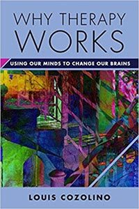 Why-Therapy-Works-Using-Our-Minds-to-Change-Our-Brains Book