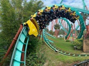 Bioenergetic is like a roller coaster
