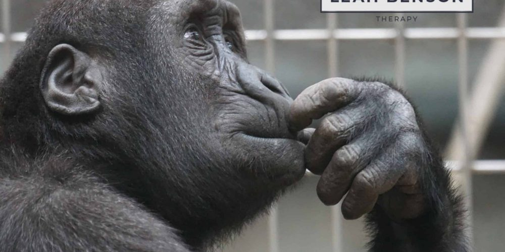 Primate confined. Why happiness is so elusive