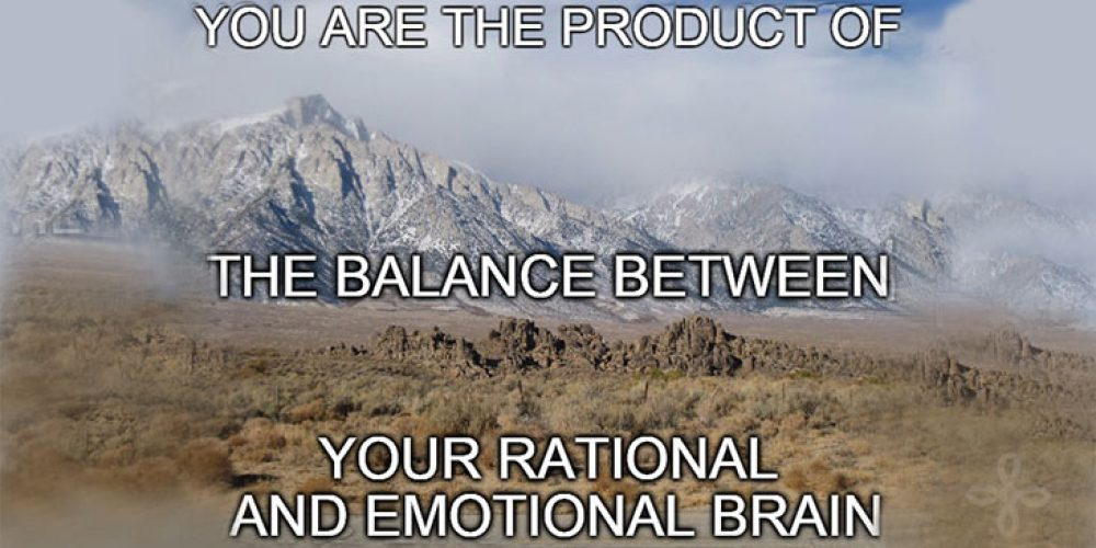 You are the product of the balance between your rational and emotional brain.